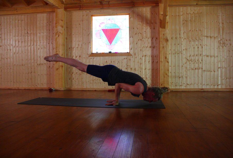 evolutionary.yoga